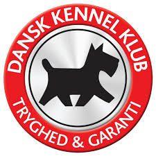 Dansk Kennel Klub giver tryghed